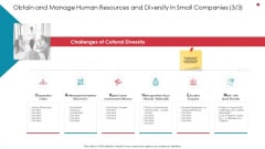 Obtain And Manage Human Resources And Diversity In Small Companies Systems Business Analysis Method Graphics PDF