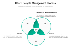 Offer Lifecycle Management Process Ppt PowerPoint Presentation Icon Model Cpb Pdf