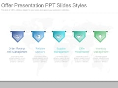 Offer Presentation Ppt Slides Styles