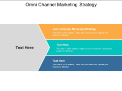 Omni Channel Marketing Strategy Ppt PowerPoint Presentation File Portfolio Cpb