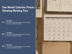 One Month Calendar Picture Showing Meeting Plan Ppt PowerPoint Presentation Slides Examples PDF