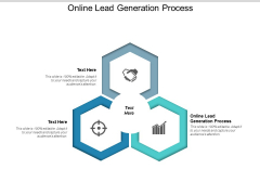 Online Lead Generation Process Ppt PowerPoint Presentation Outline Format Cpb