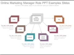 Online Marketing Manager Role Ppt Examples Slides