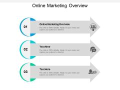 Online Marketing Overview Ppt PowerPoint Presentation Slides Design Inspiration Cpb
