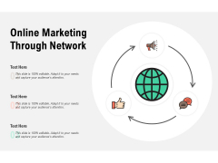 Online Marketing Through Network Ppt PowerPoint Presentation Icon Graphics Example