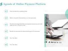 Online Payment Platform Agenda Of Online Payment Platform Topics PDF