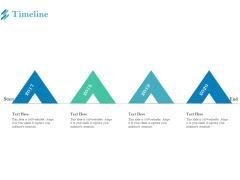 Online Payment Platform Timeline Ppt Slides Skills PDF