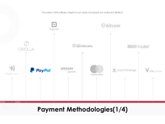 Online Product Planning Payment Methodologies Paypal Ppt Styles Display PDF