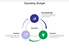 Operating Budget Ppt PowerPoint Presentation Model Example Topics Cpb