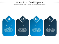 Operational Due Diligence Ppt PowerPoint Presentation Professional Visual Aids Cpb Pdf