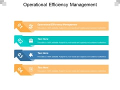Operational Efficiency Management Ppt Powerpoint Presentation Show Topics Cpb