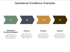 Operational Excellence Examples Ppt PowerPoint Presentation Picture Cpb