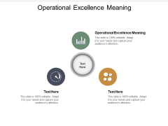 Operational Excellence Meaning Ppt PowerPoint Presentation Gallery Objects Cpb
