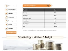 Opportunities And Threats For Penetrating In New Market Segments Sales Strategy Initiatives And Budget Sample PDF