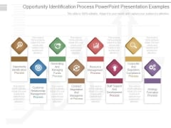 Opportunity Identification Process Powerpoint Presentation Examples