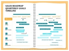Optimizing Marketing Channel For Profit Increment Sales Roadmap Quarterly Goals Timeline Infographics PDF