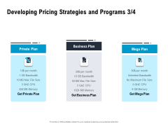 Optimizing The Marketing Operations To Drive Efficiencies Developing Pricing Strategies And Programs Business Plan Designs PDF