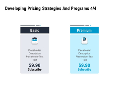 Optimizing The Marketing Operations To Drive Efficiencies Developing Pricing Strategies And Programs Premium Icons PDF