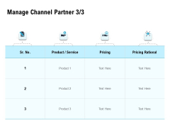 Optimizing The Marketing Operations To Drive Efficiencies Manage Channel Partner Pricing Professional PDF
