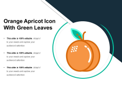 Orange Apricot Icon With Green Leaves Ppt PowerPoint Presentation Icon Model PDF