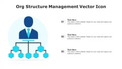 Org Structure Management Vector Icon Ppt Model Demonstration PDF
