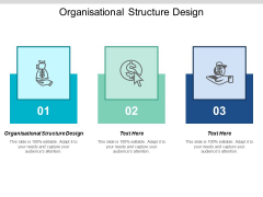 Organisational Structure Design Ppt PowerPoint Presentation Icon Themes Cpb