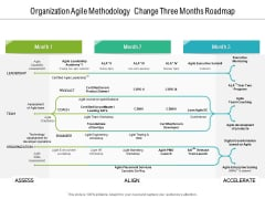 Organization Agile Methodology Change Three Months Roadmap Graphics