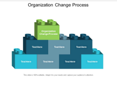 Organization Change Process Ppt PowerPoint Presentation Model Background Image Cpb