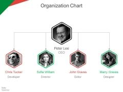 Organization Chart Ppt PowerPoint Presentation Ideas Tips