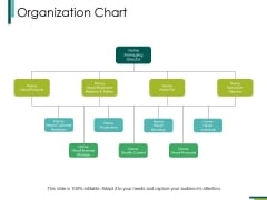 Organization Chart Ppt PowerPoint Presentation Infographic Template Files