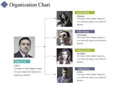 Organization Chart Ppt PowerPoint Presentation Infographic Template Gallery