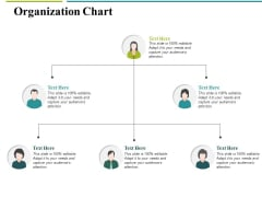Organization Chart Ppt PowerPoint Presentation Infographics Guide