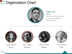 Organization Chart Ppt PowerPoint Presentation Inspiration Guide