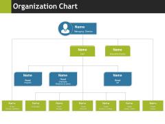 Organization Chart Ppt PowerPoint Presentation Inspiration Slide Download
