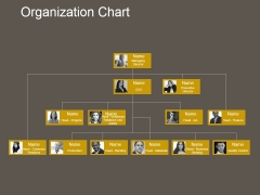 Organization Chart Ppt PowerPoint Presentation Layout