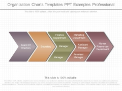 Organization Charts Templates Ppt Examples Professional