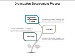 Organization Development Process Ppt PowerPoint Presentation Ideas Slide Download Cpb