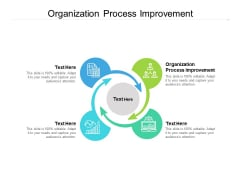 Organization Process Improvement Ppt PowerPoint Presentation Slides Inspiration Cpb Pdf