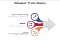 Organization Process Strategy Ppt PowerPoint Presentation Visual Aids Background Images Cpb Pdf Pdf
