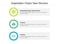 Organization Project Team Structure Ppt PowerPoint Presentation Inspiration Portfolio Cpb