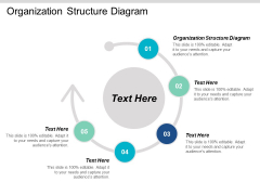 Organization Structure Diagram Ppt PowerPoint Presentation Summary Examples Cpb