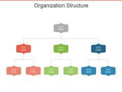 Organization Structure Ppt PowerPoint Presentation File Slide