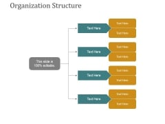 Organization Structure Ppt PowerPoint Presentation Gallery Icons