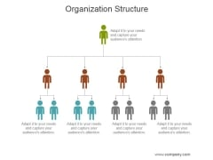 Organization Structure Ppt PowerPoint Presentation Inspiration