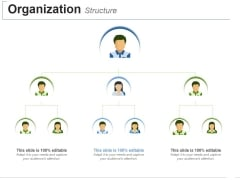 Organization Structure Ppt PowerPoint Presentation Layouts Inspiration