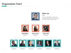 Organizational Building Blocks Organization Chart Ppt PowerPoint Presentation Portfolio Background Designs PDF