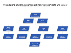 Organizational Chart Showing Various Employee Reporting To One Manger Ppt PowerPoint Presentation File Grid PDF