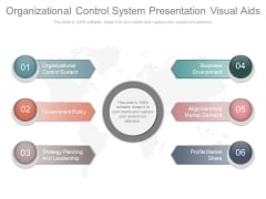 Organizational Control System Presentation Visual Aids