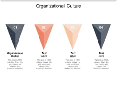Organizational Culture Ppt PowerPoint Presentation File Designs Cpb