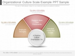 Organizational Culture Scale Example Ppt Sample